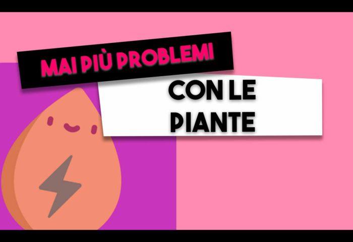problemi piante
