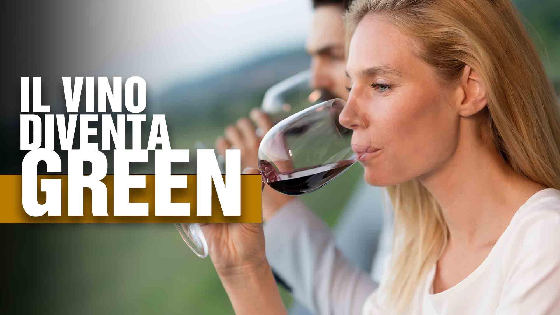 vino green